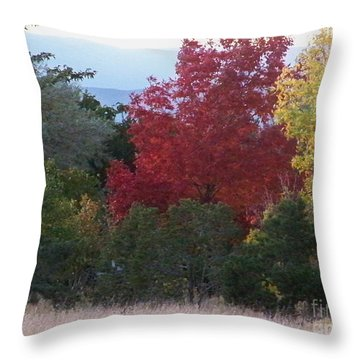 Fall In Santa Fe Throw Pillow by Brian  Commerford