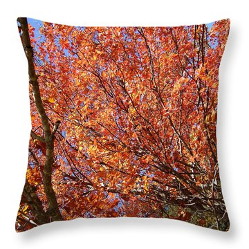 Fall In The Blue Ridge Mountains Throw Pillow by Flavia Westerwelle