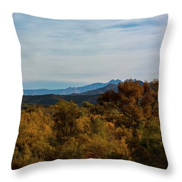 Fall In The Desert Throw Pillow