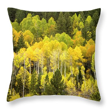 Fall In The Sierras Throw Pillow