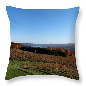 Fall In The Vineyards Throw Pillow