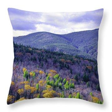 Fall In The White Mountains Throw Pillow
