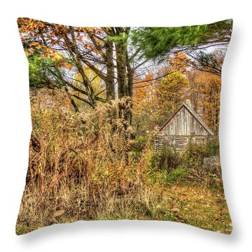 Fall In The Woods Throw Pillow