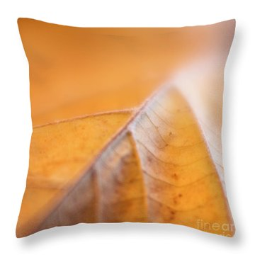 Throw Pillow featuring the photograph Fall Leaf by Elena Nosyreva