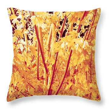 Fall Leaves #1 Throw Pillow