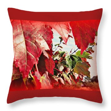 Fall Leaves #10 Throw Pillow
