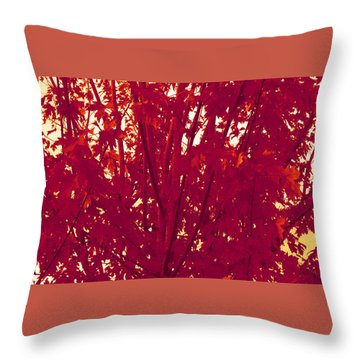 Fall Leaves #2 Throw Pillow