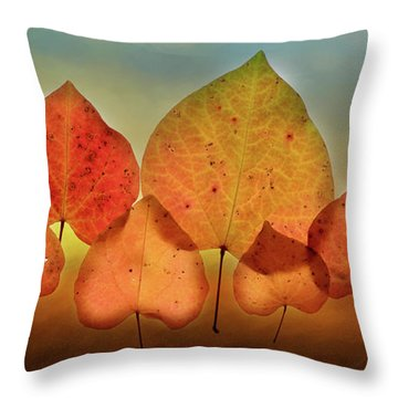Fall Leaves #3 Throw Pillow