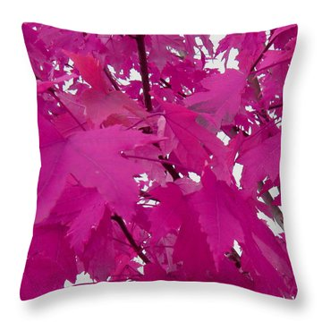 Fall Leaves #5 Throw Pillow