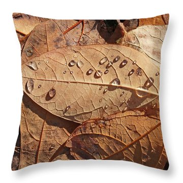 Fall Leaves And Dew 15 2017 Throw Pillow