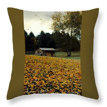 Throw Pillow featuring the photograph Fall Leaves - No. 2015 by Joe Finney
