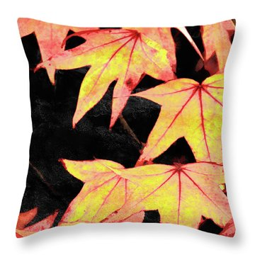 Fall Leaves Throw Pillow by Robert Ball