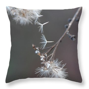 Throw Pillow featuring the photograph Fall - Macro by Jeff Burgess