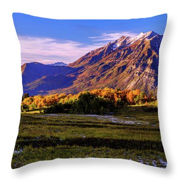 Fall Meadow Throw Pillow