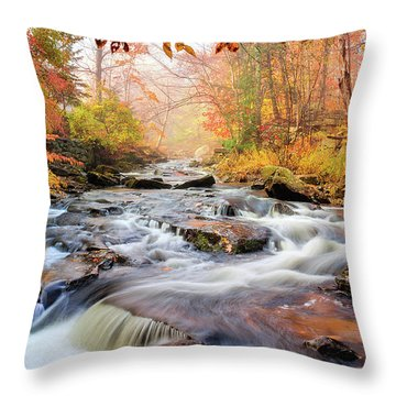 Fall Morning At Gunstock Brook Throw Pillow