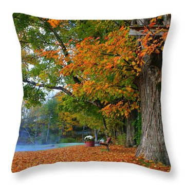 Fall Morning In Jackson Throw Pillow