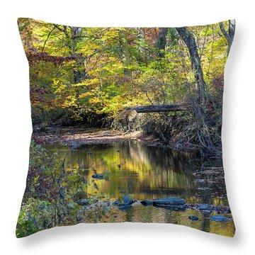 Fall Morning Throw Pillow