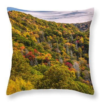 Throw Pillow featuring the photograph Fall Mountain Side by Tyson Smith