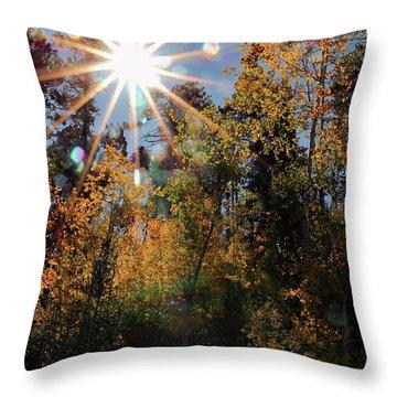 Fall Mt. Lemmon 2017 Throw Pillow