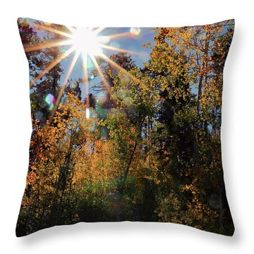 Fall Mt. Lemmon 2017 Throw Pillow