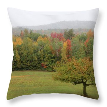 Fall Nh Throw Pillow