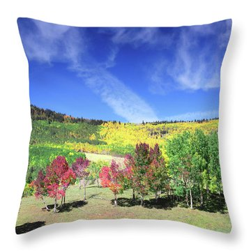 Fall On County Road 12 Throw Pillow