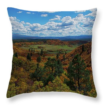 Fall On Four Mile Road Throw Pillow by Jason Coward