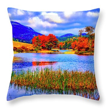 Fall On Long Pond Acadia National Park Maine  Throw Pillow