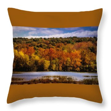 Fall On Springfield Lake Throw Pillow