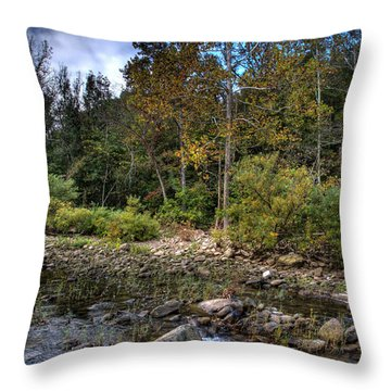 Throw Pillow featuring the photograph Fall On The Hailstone by Michael Dougherty