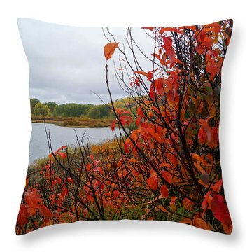 Fall On The Lake Throw Pillow