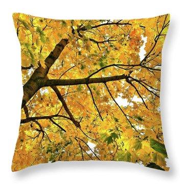 Fall On William Street Throw Pillow
