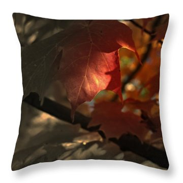 Fall Or Not Throw Pillow