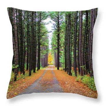 Fall Pines Road Throw Pillow