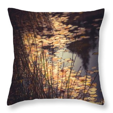 Throw Pillow featuring the photograph Fall Pond by The Forests Edge Photography - Diane Sandoval