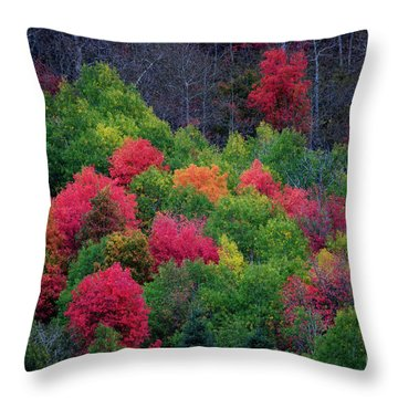 Fall Poppers Throw Pillow
