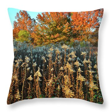 Throw Pillow featuring the photograph Fall Prairie In Moraine Hills by Ray Mathis