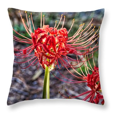 Fall Radiance Throw Pillow