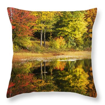 Throw Pillow featuring the photograph Fall Reflection by Chad Dutson