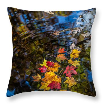 Fall Reflection - Pisgah National Forest Throw Pillow