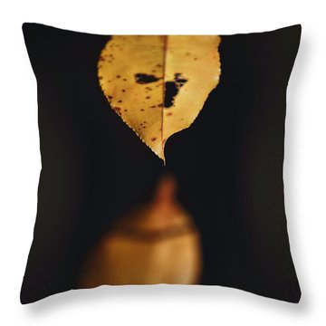 Fall Reflections Throw Pillow by Eduard Moldoveanu