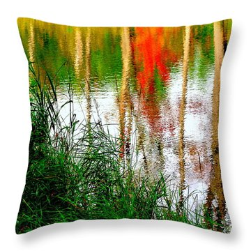 Throw Pillow featuring the photograph Fall Reflections by Elfriede Fulda