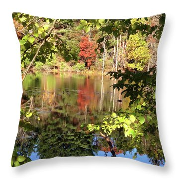 Fall Reflections Throw Pillow by Nancy Landry