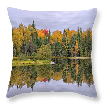 Fall Reflecton Throw Pillow