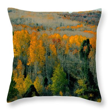 Fall Ridge Throw Pillow by David Lee Thompson
