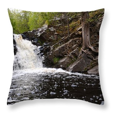Throw Pillow featuring the photograph Fall River View by Sandra Updyke
