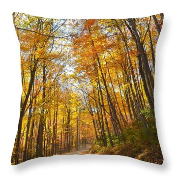 Fall Road Throw Pillow