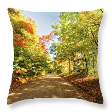 Throw Pillow featuring the photograph Fall Roads by Lars Lentz