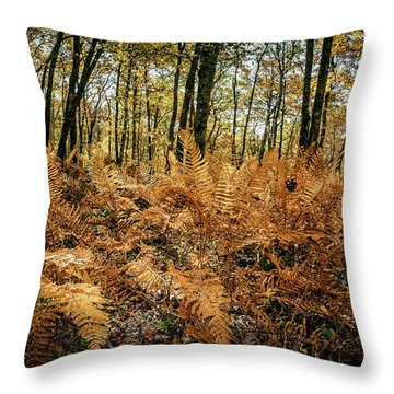 Fall Rust Throw Pillow