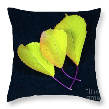 Throw Pillow featuring the photograph Fall Season Colors by Kennerth and Birgitta Kullman